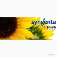 Семена подсолнечника - гибриды Сингента (Syngenta - импорт)
