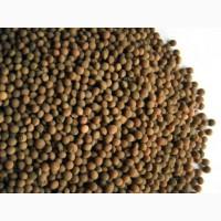 Реализуем семена вики Никольская (ЭС)