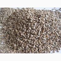 Семена кормовых трав и смесей