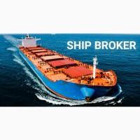Перевозка зерновых грузов водным транспортом