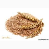 Отруби пшеничные ГОСТ(россыпь)