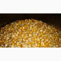 Кормовое зерно в Ивановской области