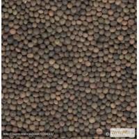Продам: Семена вики яровой Луговская 24, СЭ, ЭС
