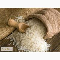 Рисовая крупа оптом