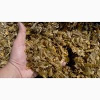 Силос кукурузный, сенаж многолетних трав