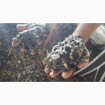 Отходы семечки подсолнечника