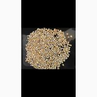Предлагаем фуражную кукурузу
