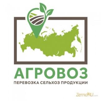 Перевозка зерна по России