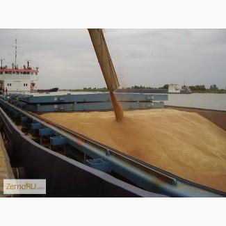 Зерновозы, требуются