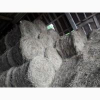 Продаем высококачественное сено/сенаж амбарного хранения. Прием заказов