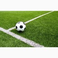 Травосмесь «Спортивная»