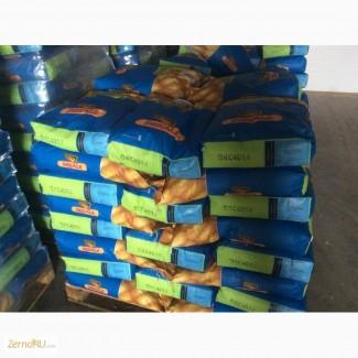 Семена гибриды кукурузы Monsanto ДКС 4014(ФАО340)