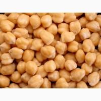 ООО НПП Зарайские семена закупает семена нута от 20 тонн