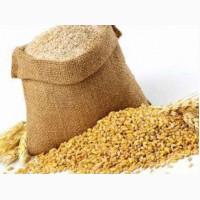 Отруби пшеничные, ячменные, гороховые