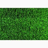 Травосмесь «Быстрый газон»
