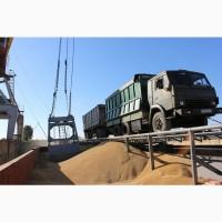 Услуги перевалки зерна Азов