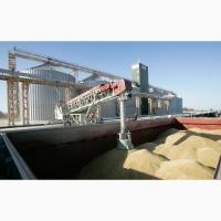 Оказывем услуги по перевалке зерна( зерновых культур)