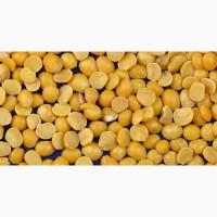 Желтый горох (продовольственный)
