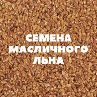 Продам семена масличного льна на посев