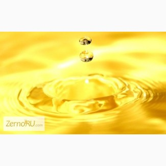 Продам масло подсолнечное нераф Наливом -40 руб кг
