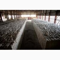 Мука пшеничная оптом от производителя