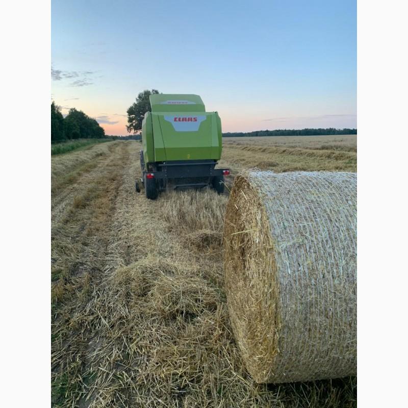 Фото 2. Сено разнотравье и солома урожай 2020 пшеничная и ячменная в рулонах, высокого качества