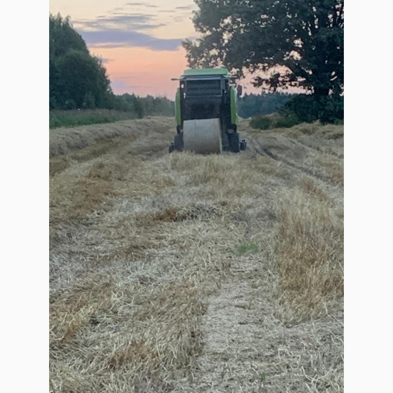 Фото 3. Сено разнотравье и солома урожай 2020 пшеничная и ячменная в рулонах, высокого качества