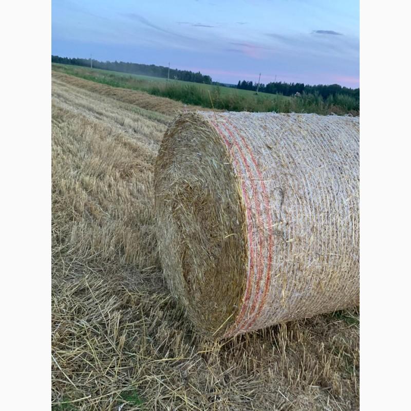 Фото 4. Сено разнотравье и солома урожай 2020 пшеничная и ячменная в рулонах, высокого качества