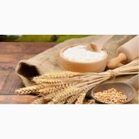 Продаем пшеничную муку