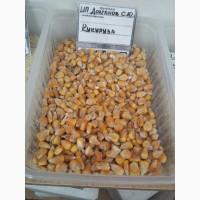 Пшеница, Овес, Ячмень, Кукуруза, Кормосмеси, Комбикорма