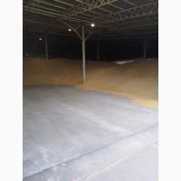 Перевалка Зерновых и масличных культур