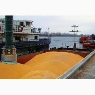 Услуги перевозки зерна на экспорт