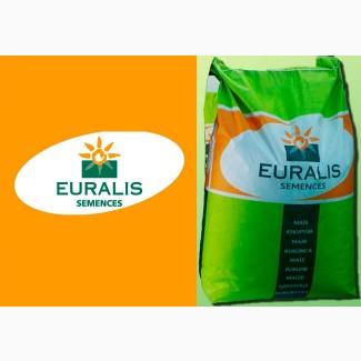 Семена кукурузы Евралис Семанс / euralis semences