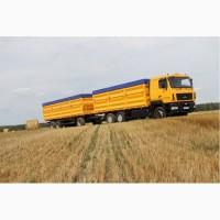 Перевозка зерновых культур