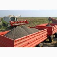 Перевозка семечек, кукурузы