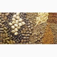 Шрот соевый протеин 48-52%