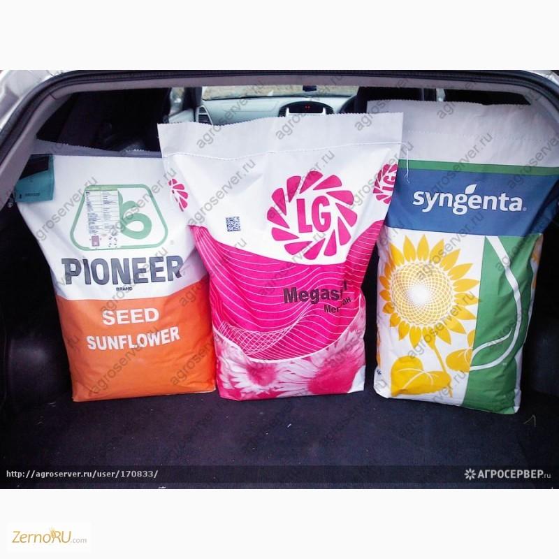 Фото 3. Продам: Семена кукурузы. Пионер, Монсанто, Сингента, Лимагрейн