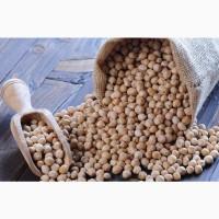 Семена нута: Приво 1, Волжанин 50, Волгоградский 10
