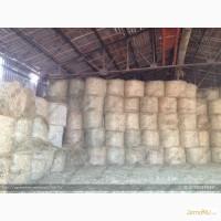 Продам: Сено, солому, силос кукурузный, сенаж (с доставкой и с места)