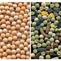 Очистка, калибровка, сортировка по цвету зерна