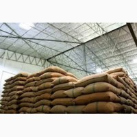 Рис крупа оптом от производителя