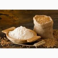 Продаем муку пшеничную в/с, 1/с и 2/c