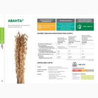 Семена сои: сорт АВАНТА селекции Компании Соевый комплекс