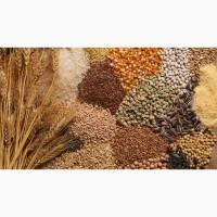 Семена яровых культур