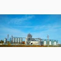 Элеватор закупает пшеницу 3-4-5 кл