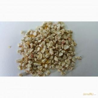 Зародыш кукурузы