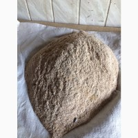 Отруби пшеничные фасовка