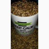 Фуражное зерно с доставкой! Овес, ячмень, кукуруза, пшеница, жмыхи, шрота