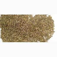 ООО НПП «Зарайские семена» продает семена: эспарцет, оптом и в розницу