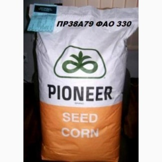 Семена кукурузы, «Syngenta» «Pioneer» «Limagrain» «Monsanto» «NS»
